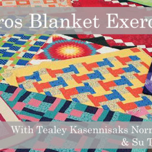kairos blanket exercise, indigenous women's arts conference, pass the feather. aboriginal arts Collective of canada